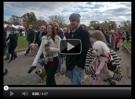 Mutt Strut: Watch the Slideshow